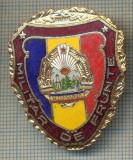 "ZET 785 INSIGNA ,,MILITAR DE FRUNTE"" - PERIOADA RSR - PENTRU NOSTALGICI"