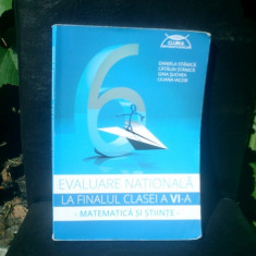Evaluarea nationala la finalul clasei a VI-a matematica si stiinte - Daniela Stanila, Catalin Stanila - Curs diverse stiinte