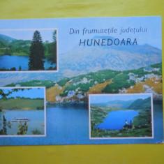 HOPCT 31433 DIN FRUMUSETILE JUDETULUI HUNEDOARA -JUD HUNEDOARA-NECIRCULATA