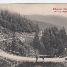 SALUTARI DIN TARGU MURES CIRCULATA 1909 - Carte Postala Transilvania 1904-1918, Printata
