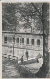 CODLEA  (BRASOV)  ,  BAZIN '' CARMEN SYLVA'' CIRCULATA 1935, Printata