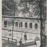 CODLEA  (BRASOV)  ,  BAZIN '' CARMEN SYLVA'' CIRCULATA 1935
