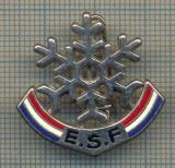 ZET 865 INSIGNA SPORTIVA - E.S.F. -RENUMITA SCOALA FRANCEZA DE SKI(SCHI)