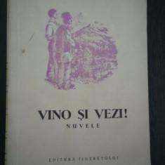 VINO SI VEZI ! - Cezar Petrescu - Ilustratii: Radu Viorel - 1954, 393 p. - Nuvela