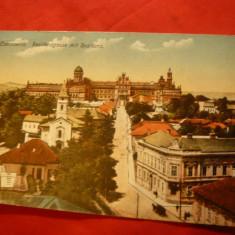 Ilustrata Cernauti 1919, color, destinatar Sofie Livianu la Cernauti - Carte Postala Moldova dupa 1918, Circulata, Printata