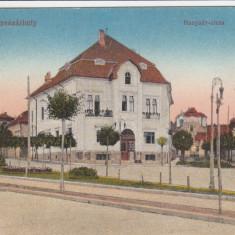 TARGU MURES STRADA HUNIAZILOR CIRCULATA 1917 - Carte Postala Transilvania dupa 1918, Printata
