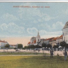 TARGU MURES PIATA SZECHENYI - Carte Postala Transilvania dupa 1918, Necirculata, Printata