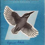 DICOVERIES. ACTIVITY BOOK 3 de STEVE ELSWORTH - Curs Limba Engleza art