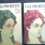 John Galsworthy - Sfirsit de capitol (2 vol.), (Editura Cartea Romaneasca, 1985)