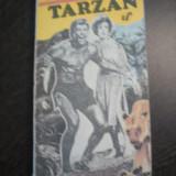 TARZAN * din Neamul Maimutelor - Edgar Rice Burroughs - 1991, 260 p. - Carte de aventura