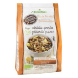 Musli din cereale germinate Fruits of the Sun bio 350g - Ulei relaxare