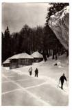 MUNTII BUCEGI IARNA LA STANA REPUBLICII RPR CIRCULAT 1958 SCHIOR, Necirculata, Fotografie