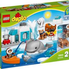 Artic - LEGO DUPLO