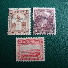 LOT 3 TIMBRE NEWFOUNDLAND, Stampilat
