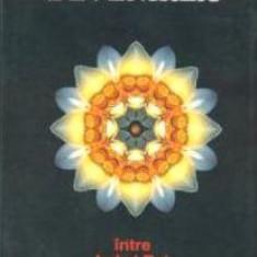 Devenirea. Intre Iad şi Rai - Ovidiu-Dragos Argesanu - Carte ezoterism
