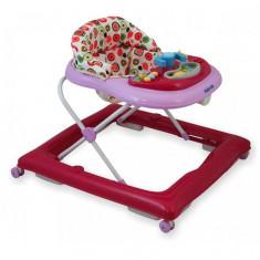 Premergator copii cu roti din silicon Baby Mix BG-1601 Pink