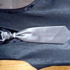 Vesta si cravata ceremonie - Costum mire