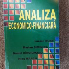 Analiza Economico Financiara - BUSE SIMINICA CARCIUMARU  MARCU