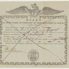 1847 document rarisim acvila Valahia marina document de export portul Braila - Diploma/Certificat