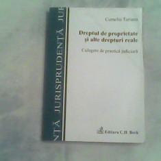 Dreptul de proprietate si alte drepturi reale-Dr.Corneliu Turianu - Carte Drept civil
