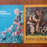 Broscuta nemultumita + Jupan Cotoila / R7P1F - Carte de povesti
