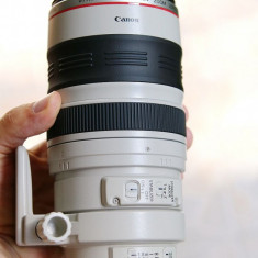 Canon EF 100-400mm f/4.5-5.6L IS USM - Obiectiv DSLR