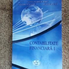 Contabilitate Financiara 1 - BARBACIORU , BALUNA , DOMNISORU