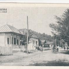 BAILE VULCANA , DAMBOVITA , BULEVARDUL  CUZA - VODA  CIRCULATA 1928