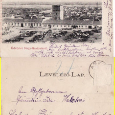 Salonta (Bihor, Oradea) - Piata- clasica, animata - Carte Postala Crisana pana la 1904, Circulata, Printata
