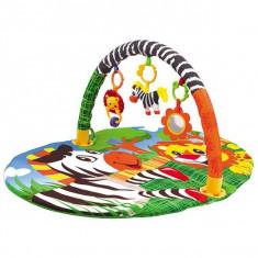 Covoras de joaca Chipolino Zebra - Vehicul