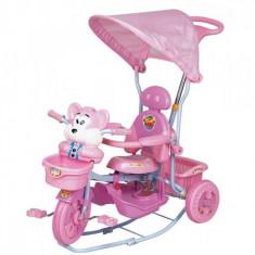 Tricicleta 2830AC Roz EuroBaby - Tricicleta copii