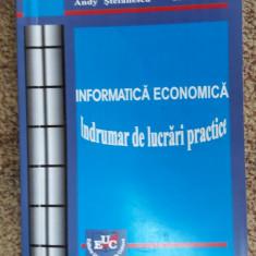 INFORMATICA ECONOMICA INDRUMARI DE LUCRARI PRACTICE CIORA, POPA - Curs Economie