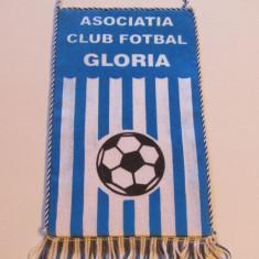 Fanion fotbal - GLORIA BISTRITA