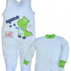 Compleu pentru bebelusi-Koala Dragon 2337-V