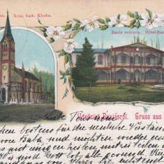 SALUTARI DIN BUZIAS HOTEL BAZAR BISERICA ROMANO-CATOLICA LITOGRAFIE CIRC.1902 - Carte Postala Banat pana la 1904, Circulata, Printata