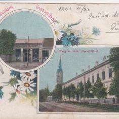 SALUTARI DIN BUZIAS GRAND HOTEL MAGAZIN EDITURA HERRLING KAROLY CIRC.1904 - Carte Postala Banat pana la 1904, Circulata, Printata