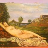 Tablou Nud, ulei pe panza, dim -70/50 cm . - Tablou autor neidentificat, Altul