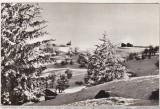 Bnk cp Peisaj de iarna pe Muntele Semenic - necirculata, Printata
