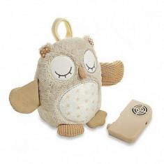 Bufnita somnoroasa cu smart senzor Nighty Night CloudB - Lampa veghe copii