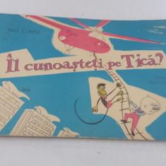 ÎL CUNOAȘTEȚI PE TICĂ/ VERSURI NINA CASSIAN/ ILUSTRAȚII NELL COBAR/ 1966 - Carte de povesti