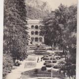 Bnk cp Baile Herculane - Vedere din parc - necirculata - Carte Postala Banat dupa 1918, Printata