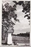 Bnk cp Curtea de Arges - Fantana Mesterului Manole - uzata, Necirculata, Printata