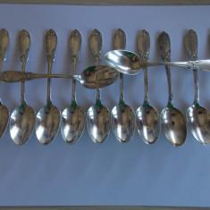 Set 12 lingurite argint -184 gr, Tacamuri