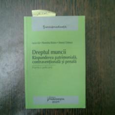 Dreptul muncii Raspunderea patrimoniala, contraventionala si penala - Lucia Uta, Florentina Rotaru
