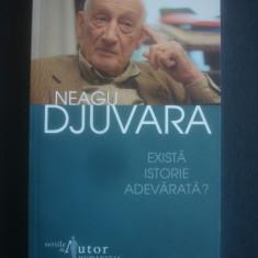 NEAGU DJUVARA - EXISTA ISTORIE ADEVARATA?