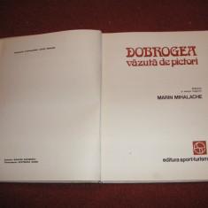 DOBROGEA VAZUTA DE PICTORI - MARIN MIHALACHE - Album Pictura