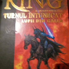 STEPHEN KING TURNUL INTUNECAT LUPII DIN CALLA - Carte Horror