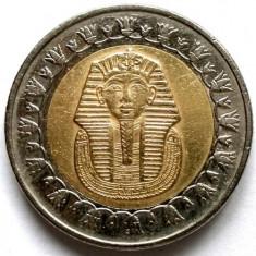 EGIPT - TUTANKAMON, 1 LIRA / ONE POUND 2008, 25mm., Africa, Cupru-Nichel