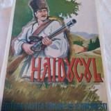 DUMBRAVA, HAIDUCUL - Carte veche