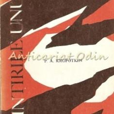 Amintirile Unui Razvratit - P. A. Kropotkin - Roman, Anul publicarii: 1969